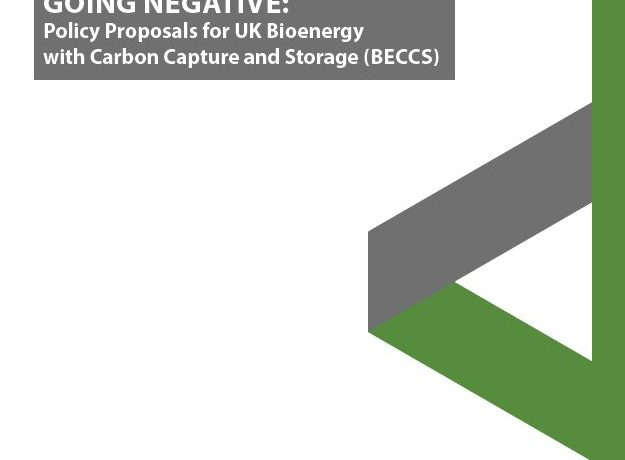 Going Negative: Policy Proposals for UK Bioenergy with Carbon Capture and Storage (BECCS)