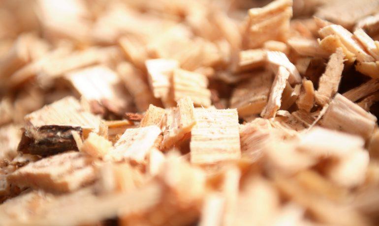Member's Brief: MCS Biomass Maintenance Standard