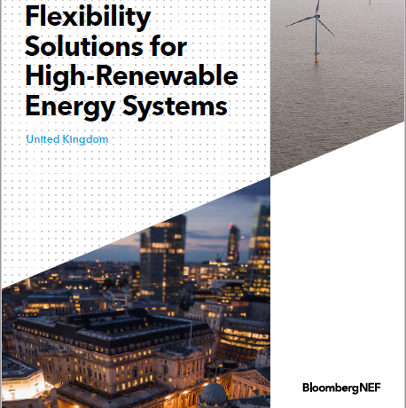 Flexibility Solutions for High-Renewable Energy Systems