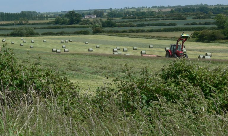 REA responds to Farming Rules for Water update