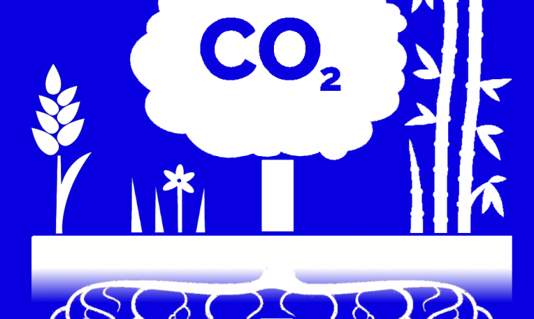 REA response to call for evidence on the expansion of the Carbon Capture Readiness (CCR) requirements